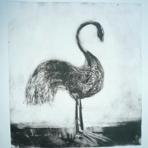 AoothecaryGalleryLondon Nine Lives Bird