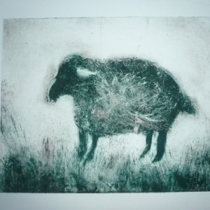 AoothecaryGalleryLondon Nine Lives Sheep